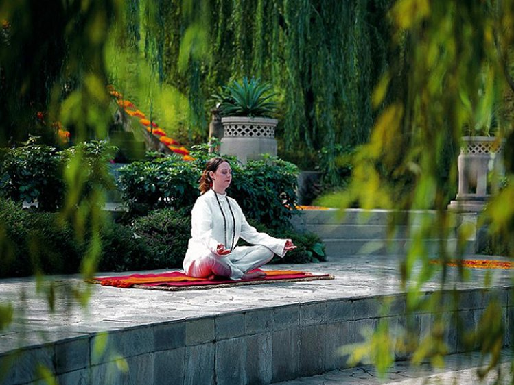 Ananda In the Himalayas - Indian Residents Ananda Yoga 1