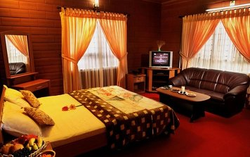 Kandamkulathy Ayursoukhyam Ayurvedic Village Beauty Care Deluxe Room A/C