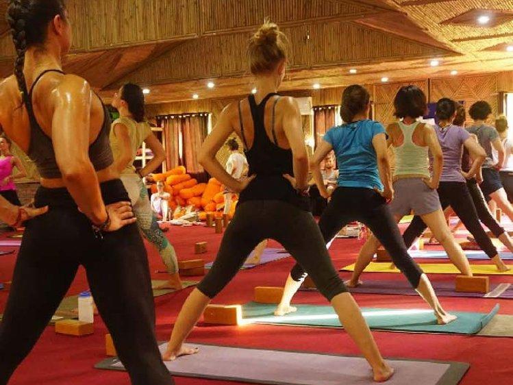 World Peace Yoga School  Yoga Teacher Training for Beginners 1