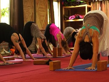 World Peace Yoga School 200 Hour (26 Nights / 27 Days)  Yoga Teacher Training