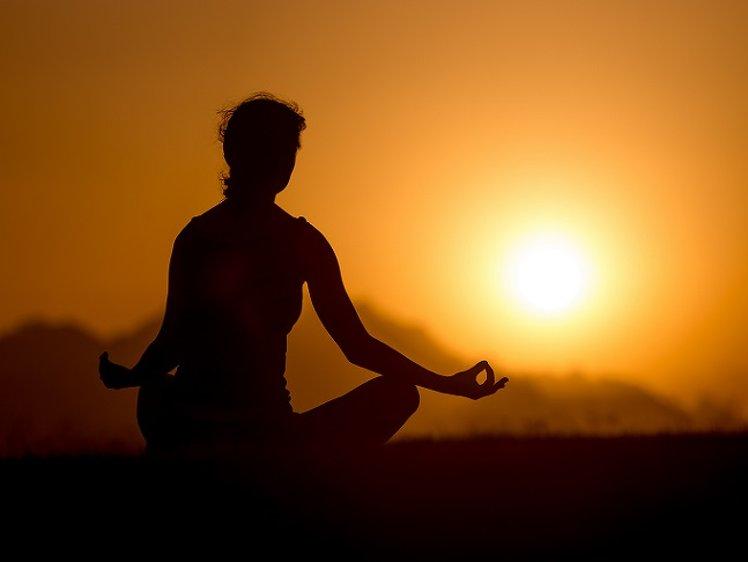 Rishikesh Sadan MEDITATION FOR BEGINNERS COURSE  1