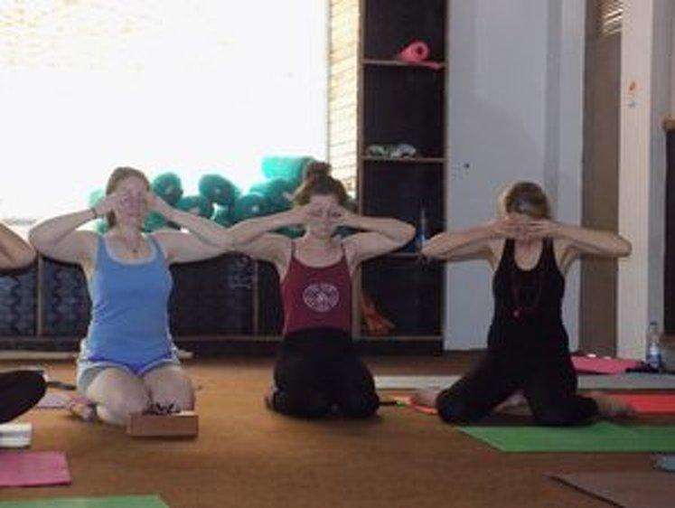 Rishikesh Nath Yogshala 300 Hour Vinyasa Flow & Ashtanga Yoga Teacher Training 3