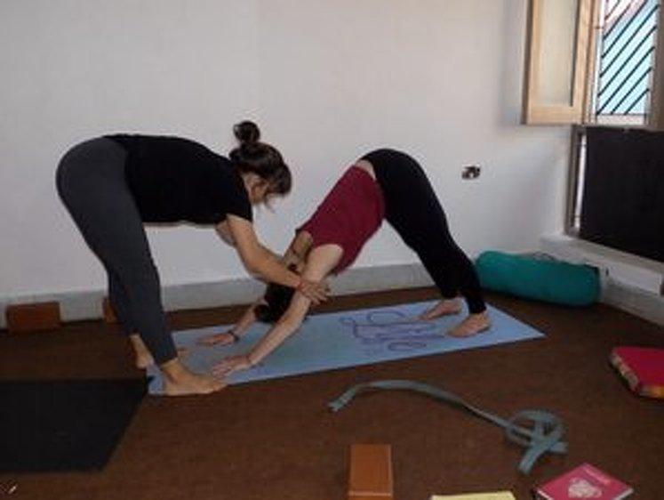 Rishikesh Nath Yogshala 300 Hour Vinyasa Flow & Ashtanga Yoga Teacher Training 14