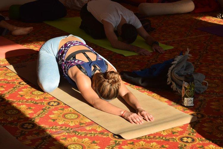 Rishikesh Nath Yogshala 300 Hour Vinyasa Flow & Ashtanga Yoga Teacher Training 15