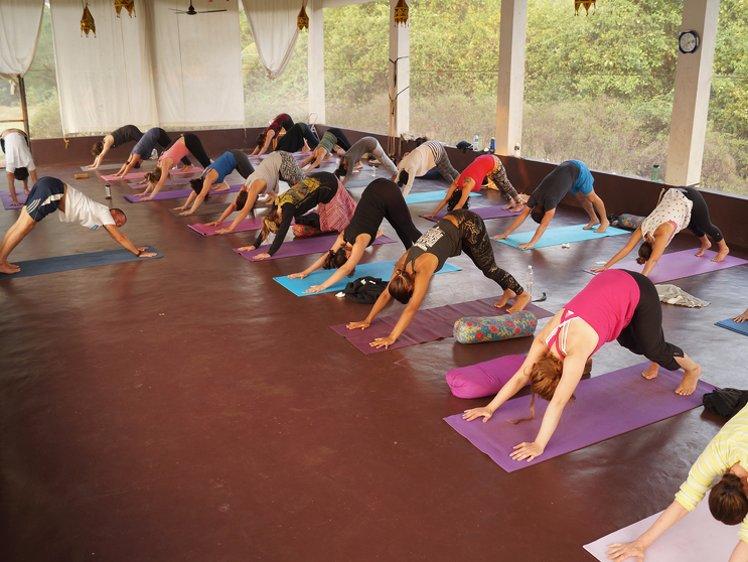Mahi Yoga Center Yoga Teacher Training 1