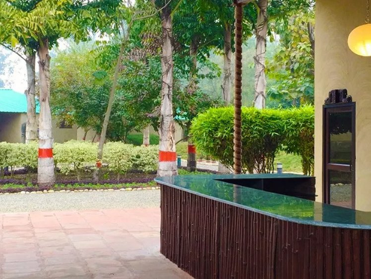 Dr Sudha's Ayurveda Kendra New Delhi India 3