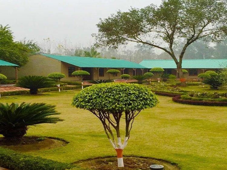Dr Sudha's Ayurveda Kendra New Delhi India 2