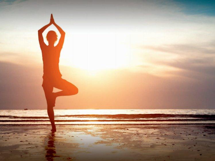 The Beach House Goa Yoga and Spa Retreat 1