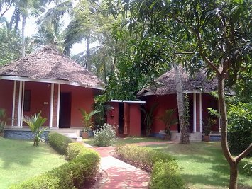Dr Franklin's Panchakarma Institute & Research Centre Rejuvenation Therapy Panchakarma Hut