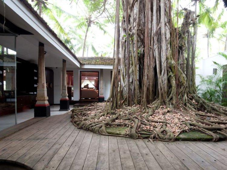 Niraamaya Retreats Surya Samudra Kovalam India 17