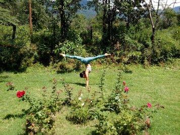 AryaMarga Society 1-month/200-hour Yoga Psyhology Course