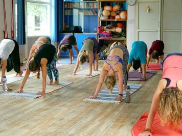 Vinyasa Yoga Academy 300 Hour (25 Nights / 26 Days) Vinyasa Yoga Teacher  Training