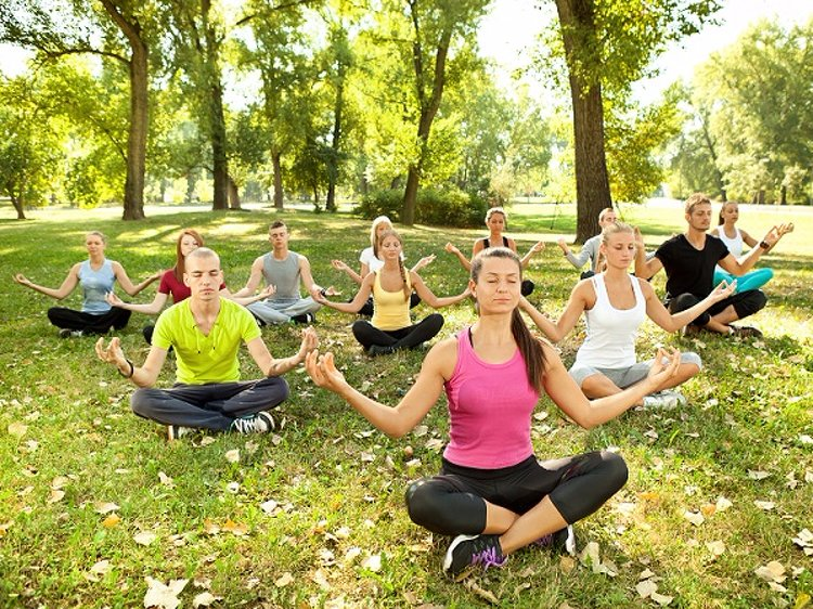 Vinyasa Yoga Academy 200-Hrs Holistic Vinyasa Fusion Flow Yoga TTC (Yoga Therapy Based) 2