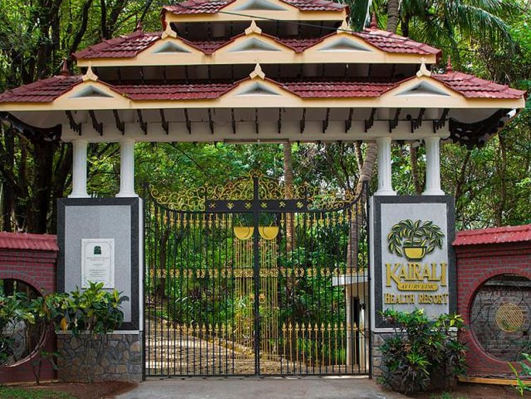 Shri Raam Institute 9 Nights / 10 Days Food Sadhana The Essence of Purity 5