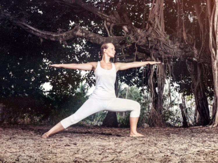Duke's Forest Lodge 20 Nights / 21 Days Yoga and Meditation 1