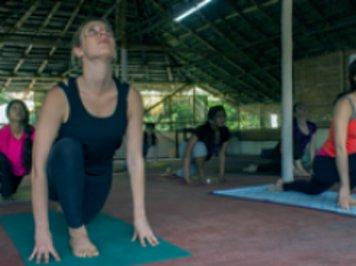 Santhi Yoga Teacher Training Institute 9 Nights / 10 Days Ayurveda Training Courses Shared Room