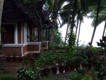 ShinShiva Ayurvedic Ashram Psoriasis Treatment Program Kerala Bungalow