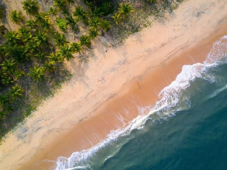 Marari Beach Resort Mararikulam India 7