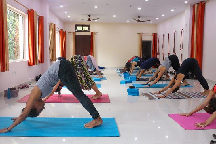 Yoga Vidya Mandiram 200 Hours Hatha and Ashtanga Vinyasa Yoga Teacher Training 10