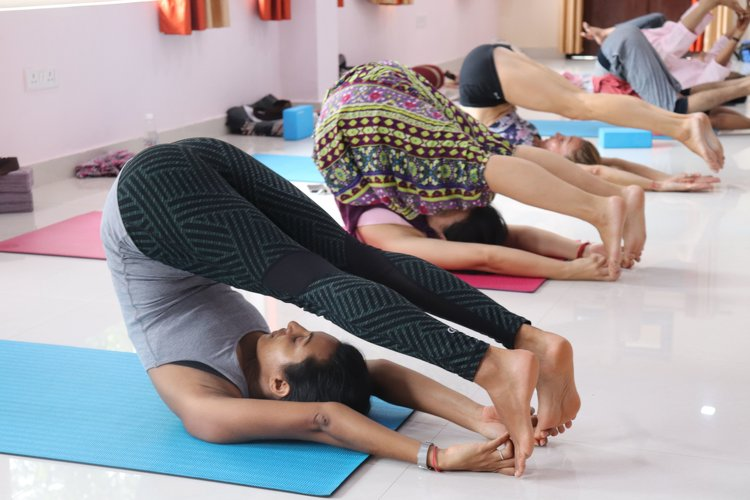 Yoga Vidya Mandiram 500 Hours Hatha & Ashtanga Vinyasa Yoga Teacher Training 14