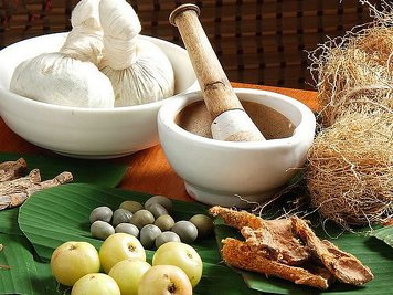 Meiveda  Ayurvedic Beach Resort 13 Nights / 14Days Ayurveda Rejuvenation Program
