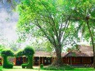 Santhi Yoga International Teachers Training and  Research Hosana Mount