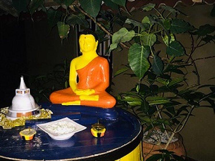 Horiwila Ayurvedic Centre Ambalangoda Sri Lanka 20