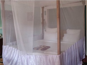 AAYAA YOGA Goa Single Room