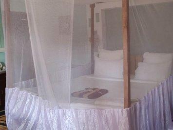 AAYAA YOGA Goa Twin Room