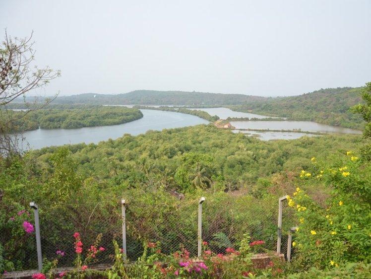 The Yoga Institute Goa Chorâo Island India 3