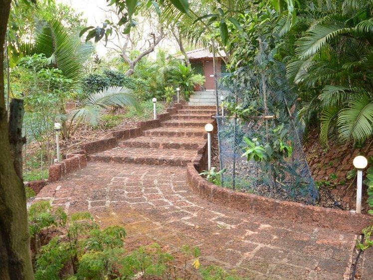 The Yoga Institute Goa Chorâo Island India 7