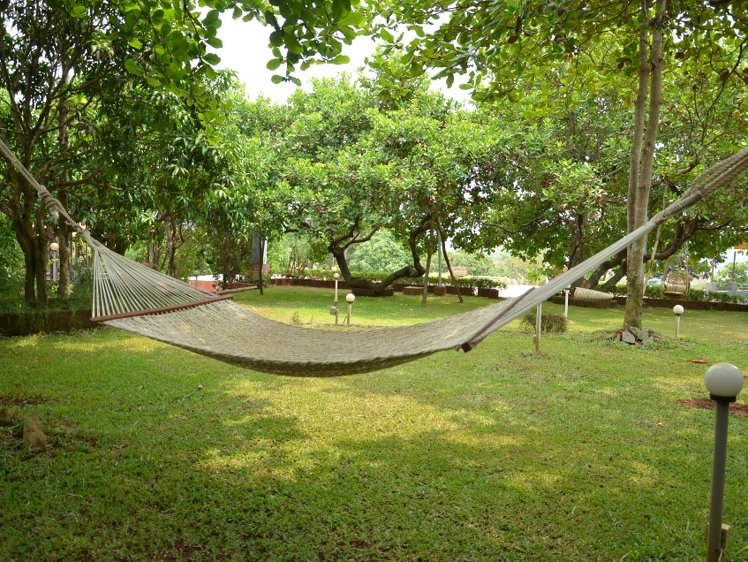 The Yoga Institute Goa Chorâo Island India 9