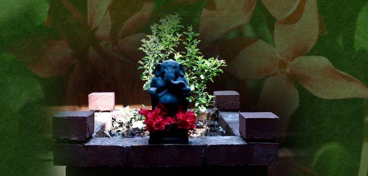 Swastha Wellness Kumta India 1