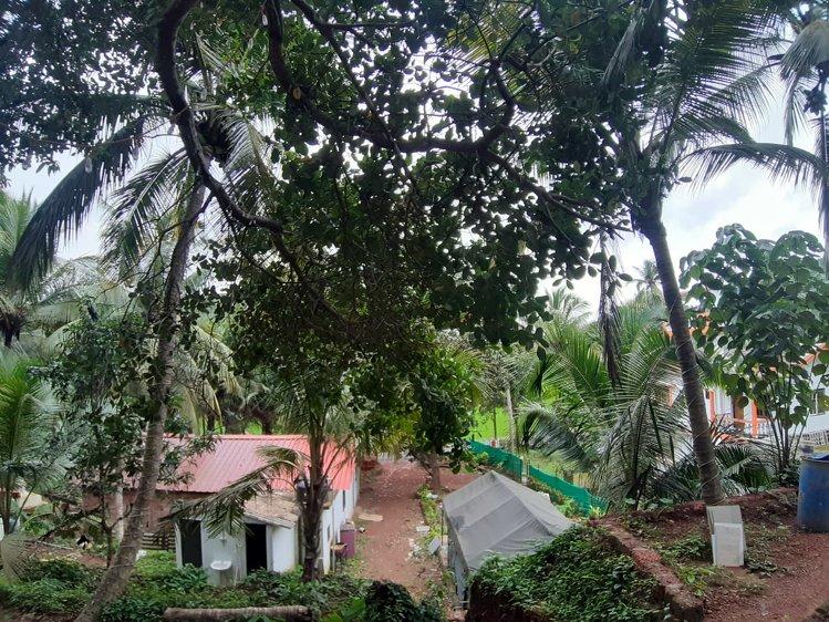 The YogaCave Initiative - Goa Canacona India 10