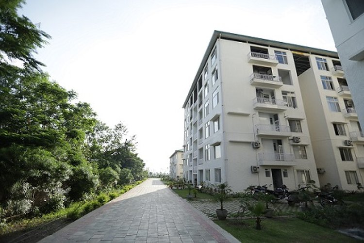 Avs Punarnava Ayurveda Hospital Baddi India 6
