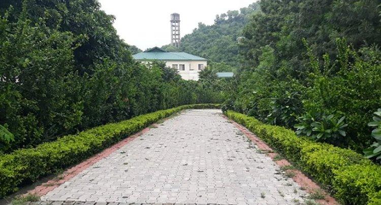 Avs Punarnava Ayurveda Hospital Baddi India 15