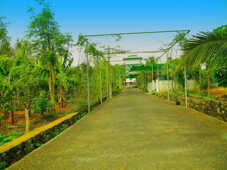 Ayur Bethaniya Ayurveda Hospital Thrissur India 7