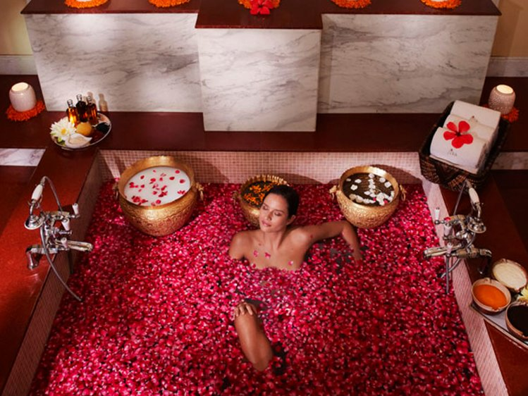 Taj Aravali Resorts and Spa, Udaipur Wellness Retreat 4